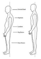 Dise o y ergonom a para la tercera edad medicina for Antropometria de la vivienda pdf