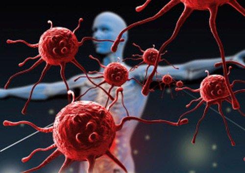 Resultado de imagen para inmunologia